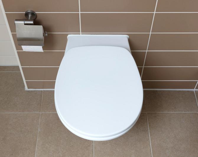Nemačka WC šolja je jedinstvena, evo po čemu