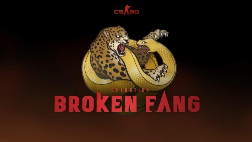 Operation Broken Fang