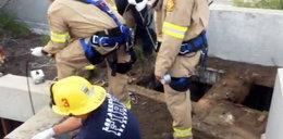 """13-latek wpadł do kanału ściekowego. Uratowanie go """"graniczące z cudem"""""""