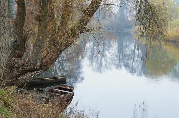 Rzeka Obra w Zbąszyniu