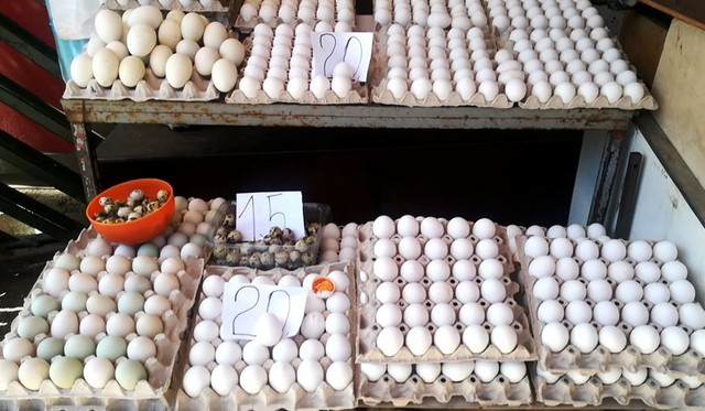 Jaja će morati da imaju i pečat