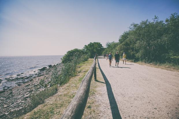 Rezerwat ekologiczny Costanera Sur
