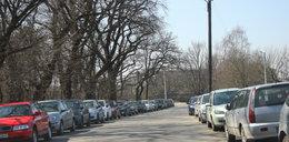 Strefa parkowania będzie większa!