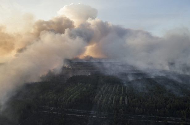Pożar lasu w Czarnobylu
