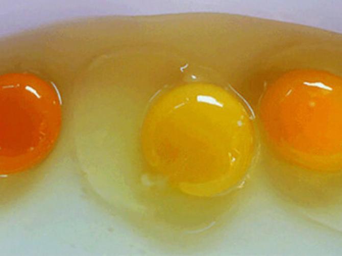 Možete li da procenite koje jaje je od BOLESNE KOKOŠKE, a koje je ZDRAVO? Tri stvari to otkrivaju!