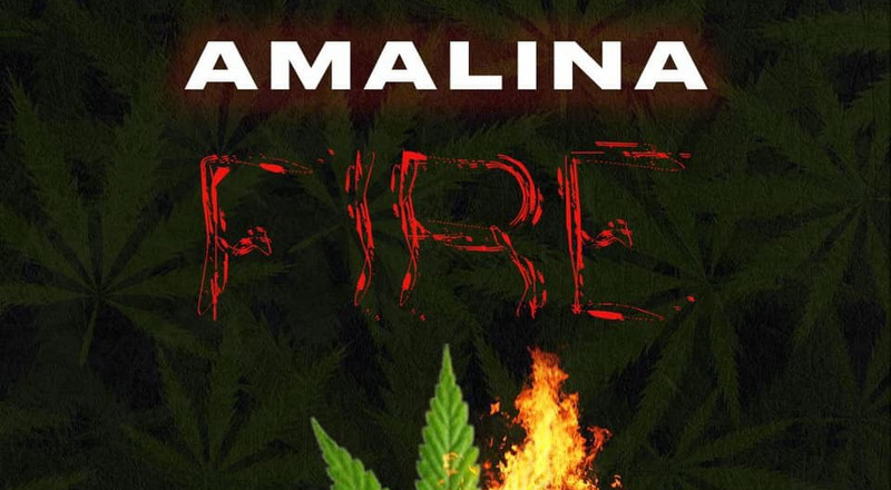 Dancehall newcomer Amalina ends 2020 with two new singles (LISTEN)