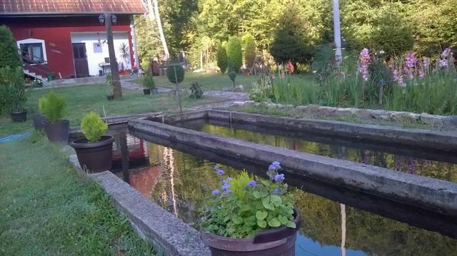 Ribnjak sa pastrmkom u selu Srndalje