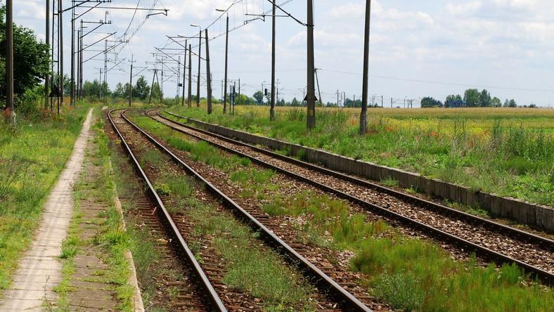 Pasażerskie przewozy kolejowe mogą być dochodowe