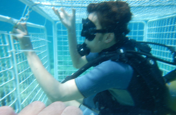 Igra: Podvodni kavez za odvažne