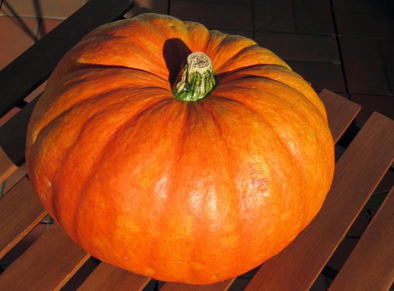 Jesień: Czas na dynie