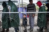 Svetski dan migranata