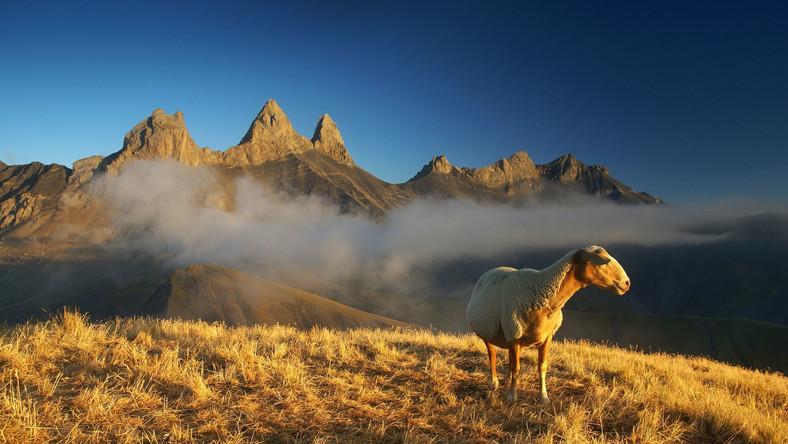 Karol Nienartowicz fotografuje góry od 2003 roku. Po analogowych początkach w 2005 roku zainteresował się fotografią cyfrową, dzięki której tak naprawdę odkrył fotografowanie gór.
