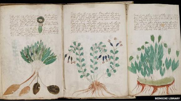Biljke koje nikome nisu poznate