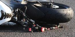 Motocyklista zginął po zderzeniu z łosiem