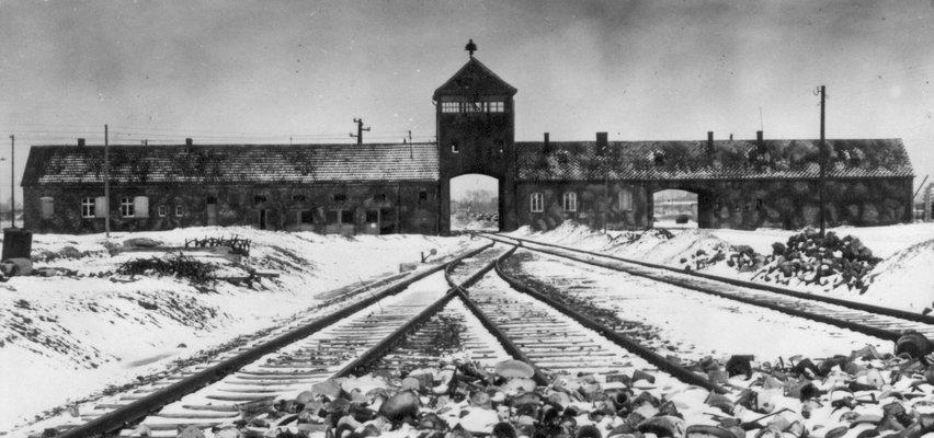 Znaleźli szczątki na terenie uczelni w Berlinie. To ofiary dr. Mengele z Auschwitz