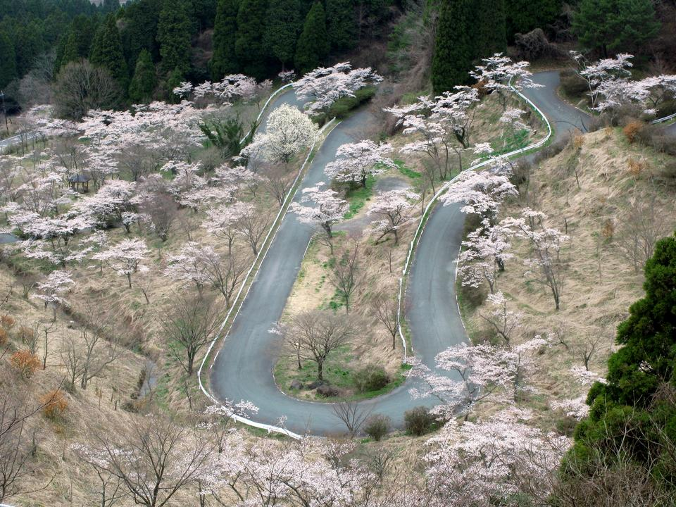 Ulubiona droga dla odważnych to Droga Touge w Japonii. Prowadzi do malowniczego Mount Fuji, gdzie znajduje się aktywny wulkan i najwyższy szczyt w kraju.