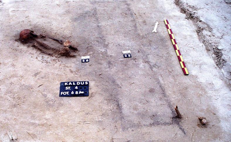 Wykopaliska w Kałdusie (woj. kujawsko-pomorskie)