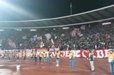LSP_delije_gol_slavlje_sever_zvezda_psg_sport_blic_safe