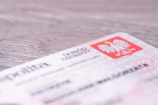 Jak skutecznie przekonać urzędy do ujawnienia adresu pozywanego dłużnika