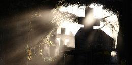 Zbrodnia na cmentarzu. Kobieta odwiedziła dwa groby. To był dla niej szczególny dzień