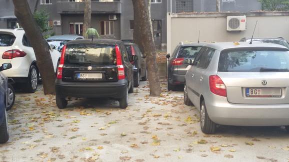 Automobili okružili zabetonirano drveće