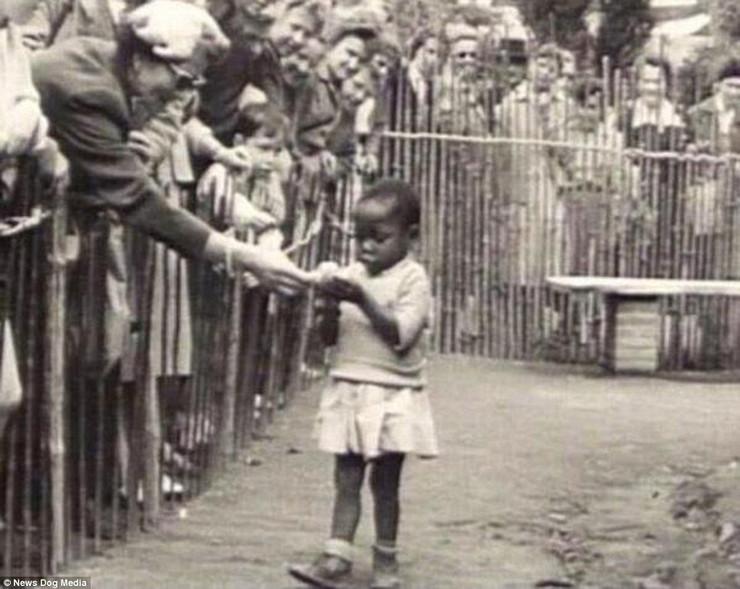 Kongo zoo