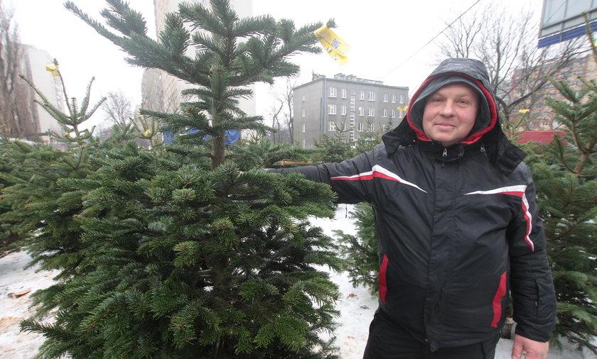 Sprzedawca choinek w Warszawie.