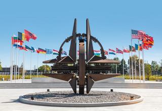 Martwica mózgu, czyli co doskwiera NATO na 70. urodziny