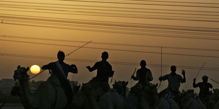 mauritanija kamile