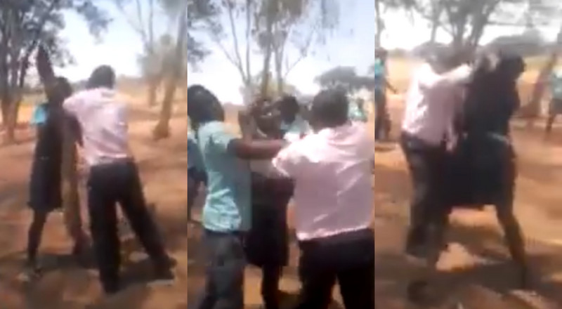 Campus gets frenzy as female student and potbellied teacher exchange blows in public (video)
