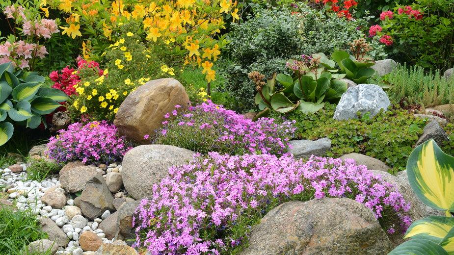 Skalniaki w ogrodzie to popularne dekoracje - K.-U. Häßler/stock.adobe.com