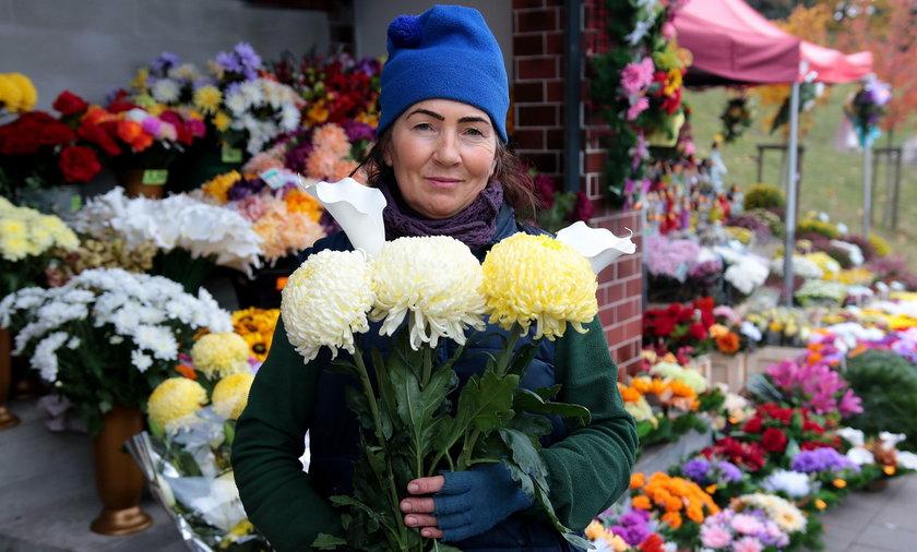 Ktore Kwiaty Wytrzymaja Na Cmentarzu Najdluzej