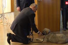 (VIDEO) Pogledajte Putinovu reakciju kada mu je Vučić poklonio ŠARPLANINCA