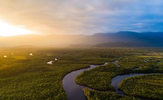 Wylesianie brazylijskiej Amazonii przyspieszyło dwukrotnie w ciągu roku