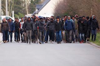 Francja: Czterech imigrantów rannych w strzelaninie w Calais