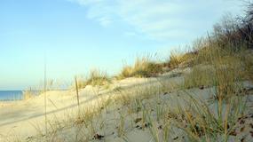 Niewyjaśniona tajemnica wydmy przy brzegu jeziora Michigan