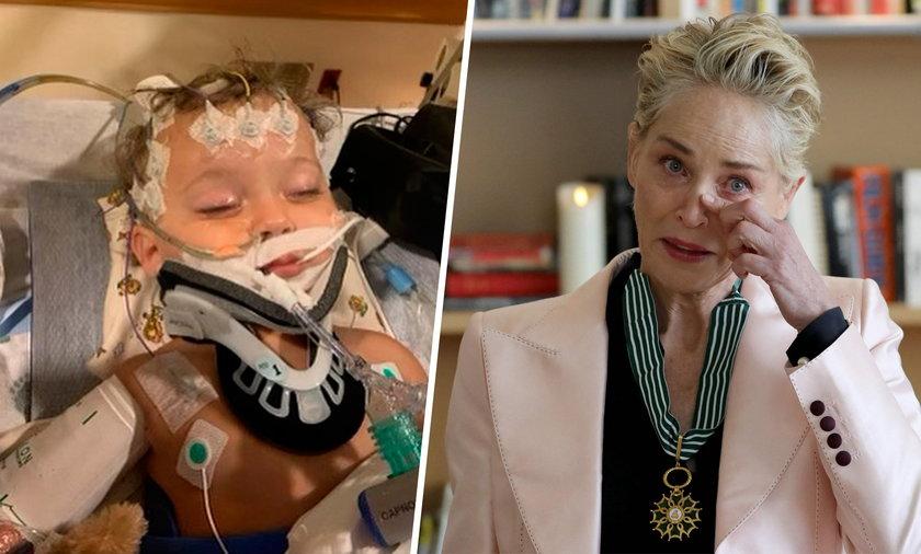Zmarł 11-miesięczny bratanek Sharon Stone.