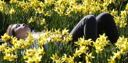 Dziś równonoc wiosenna!