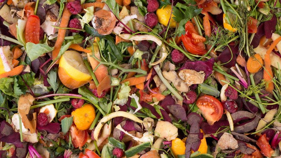 Odpadki z zepsutych warzyw i owoców źródłem światła? (ilustracyjne)