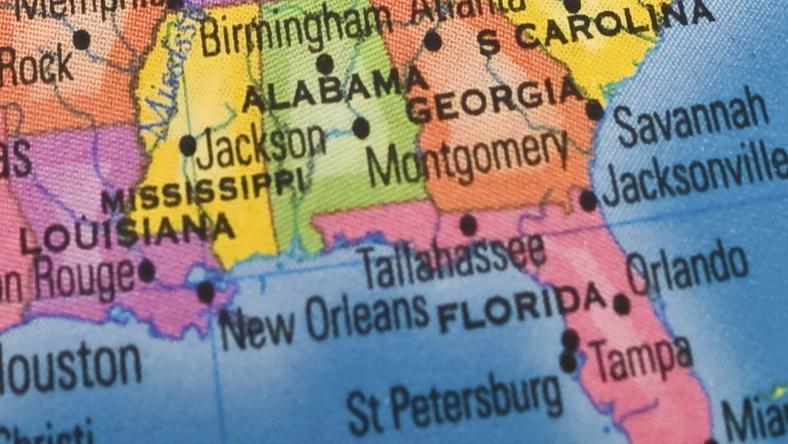 USA: odkryty podwodny las w Alabamie