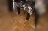 YT_Novogradnja_Pozarevac_prokisnjavanje_vesti_blic_safe