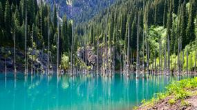 Niezwykłe jezioro Kaindy (Kajyngdy) w Kazachstanie - podwodny las w górach Tien-Szan