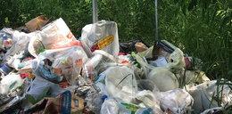Śmieciarze buszują nad Wisła i nad Świdrem