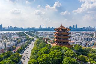 Ekspert WHO: Małe szanse, że koronawirus trafił do Wuhanu z zagranicy