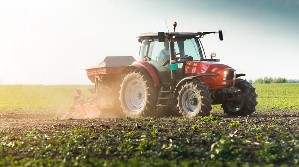 Dodatkowa pomoc - jak zapowiadał minister rolnictwa Jan Krzysztof Ardanowski - ma być w formie dopłaty do hektara zniszczonych upraw