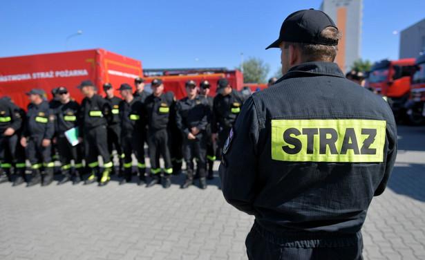 Wyjazd do Szwecji był związany z oficjalną prośbą tamtejszych władz, które za pośrednictwem Europejskiego Mechanizmu Ochrony Ludności zwróciły się o wsparcie ratownicze w walce z pożarami lasów.