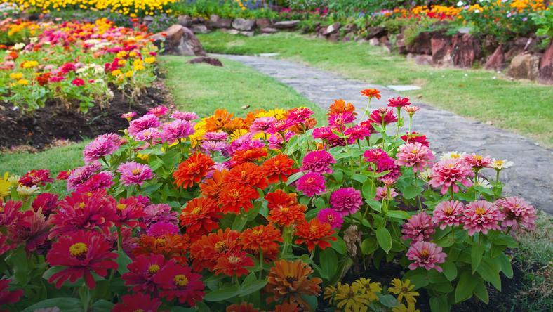 Jak Niskim Kosztem Urządzić Mały Ogród Dom