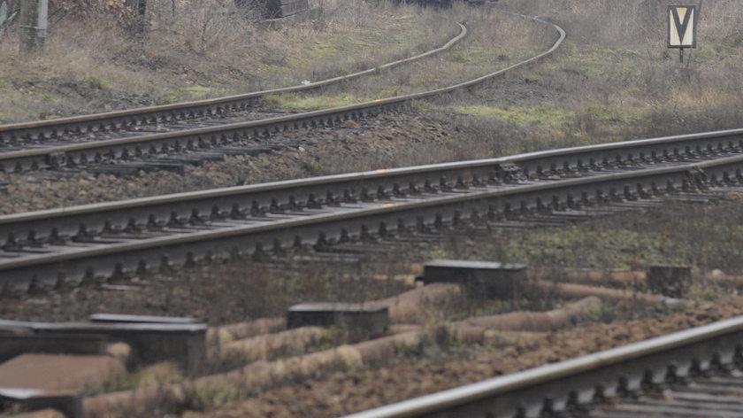 Chcieli uciec przed pociągiem, wpadli pod kolejny. Tragedia we Wrocławiu