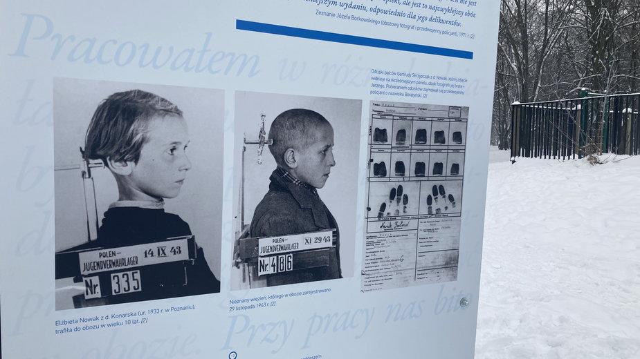 Wystawa w parku im. Szarych Szeregów