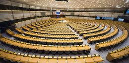 Sondaż przed wyborami. PiS wygrywa z Koalicją Europejską